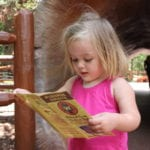 Toddler's Disneyland Personality Profiles